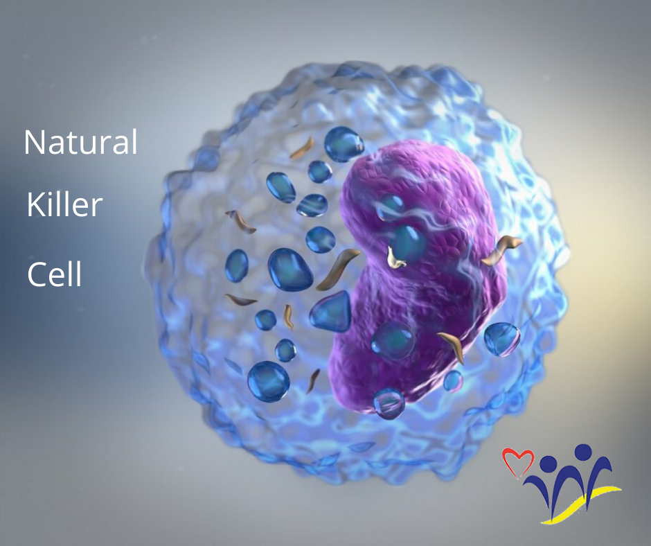Our own Anti-Viral Jedi – The Natural Killer Cell (NK Cell)